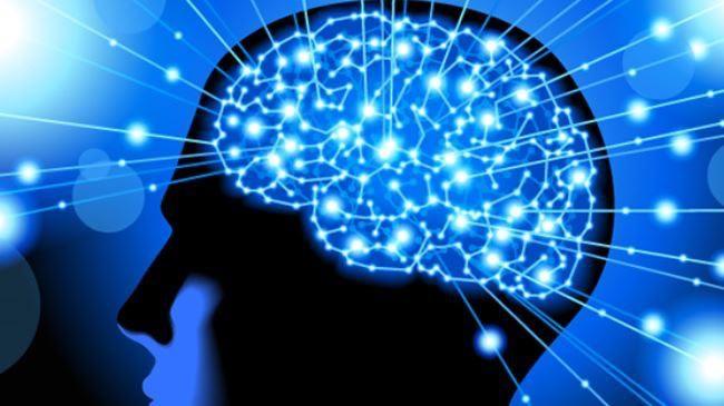 脳をだませばダイエットできる?脳科学で賢くダイエットしよう!